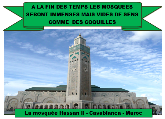MOSQUEE V