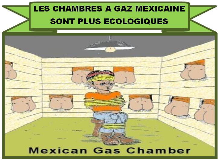David cole explose le mensonge de la chambre gaz - Existence des chambres a gaz ...