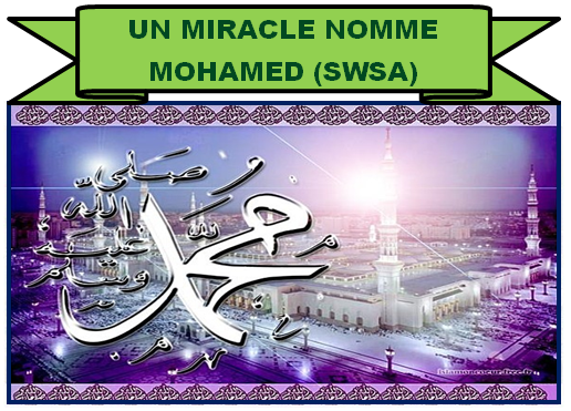 MOHAMED saws III